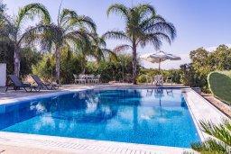 Бассейн. Кипр, Фиг Три Бэй Протарас : Роскошная вилла с большим бассейном и двориком с барбекю, 6 спален, 4 ванные комнаты, парковка, Wi-Fi