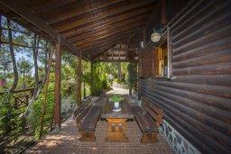 Терраса. Кипр, Троодос : Двухэтажный деревянный коттедж с большой зеленой территорией, 2 спальни, барбекю, парковка, Wi-Fi