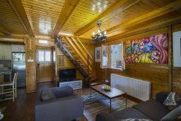 Гостиная. Кипр, Троодос : Двухэтажный деревянный коттедж с большой зеленой территорией, 3 спальни, 2 ванные комнаты, барбекю, парковка, Wi-Fi
