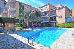 Бассейн. Кипр, Пафос город : Уютный апартамент с гостиной, двумя спальнями и двумя балконами