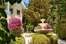 Территория. Кипр, Айос Тихонас Лимассол : Прекрасная вилла с бассейном и зеленой территорией, 4 спальни, 3 ванные комнаты, парковка, Wi-Fi