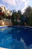 Бассейн. Кипр, Айос Тихонас Лимассол : Прекрасная вилла с бассейном и зеленой территорией, 4 спальни, 3 ванные комнаты, парковка, Wi-Fi