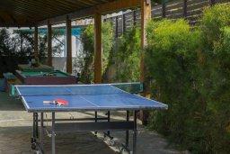 Территория. Кипр, Санрайз Протарас : Прекрасная вилла с бассейном и зеленым двориком с барбекю, 4 спальни, 2 ванные комнаты, бильярд, настольный теннис, парковка, Wi-Fi