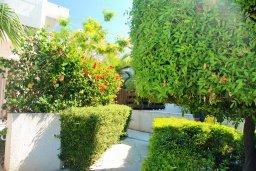 Территория. Кипр, Гермасойя Лимассол : Двухэтажный таунхаус в комплексе с бассейном, гостиная, 2 спальни, 2 ванные комнаты, терраса с обеденной зоной, парковка, Wi-Fi