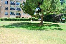 Территория. Кипр, Гермасойя Лимассол : Уютная студия с балконом в 100 метрах от пляжа