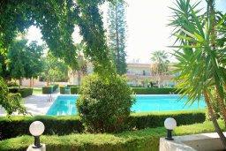 Бассейн. Кипр, Гермасойя Лимассол : Студия в комплексе с бассейном в 100 метрах от пляжа