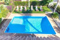 Бассейн. Кипр, Каппарис : Прекрасная вилла с бассейном и зеленым двориком с барбекю, 3 спальни, 3 ванные комнаты, парковка, Wi-Fi