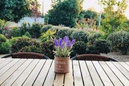 Терраса. Кипр, Хлорака : Прекрасная вилла с зеленым двориком, 3 спальни, 2 ванные комнаты, парковка, Wi-Fi