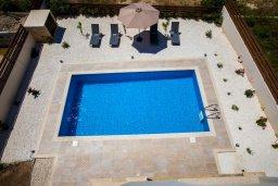 Бассейн. Кипр, Хлорака : Современная вилла с бассейном и двориком с барбекю, 3 спальни, 2 ванные комнаты, парковка, Wi-Fi