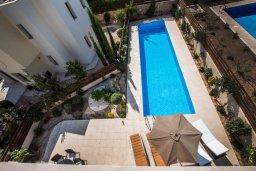 Бассейн. Кипр, Хлорака : Прекрасная вилла с бассейном и двориком с барбекю, терраса на крыше с видом на море, 3 спальни, ванные комнаты, парковка, Wi-Fi