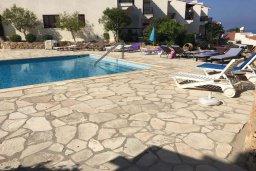 Бассейн. Кипр, Хлорака : Современная вилла с джакузи и видом на море в комплексе с бассейном, 3 спальни, 3 ванные комнаты, парковка, Wi-Fi