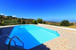 Бассейн. Кипр, Друсхия : Прекрасная вилла с бассейном и приватным двориком, 3 спальни, 3 ванные комнаты, парковка, Wi-Fi