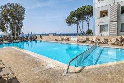 Бассейн. Кипр, Гермасойя Лимассол : Таунхаус в 30 метрах от пляжа в комплексе с бассейном, 2 спальни, 2 ванные комнаты, парковка, Wi-Fi