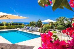 Бассейн. Кипр, Пейя : Прекрасная вилла с бассейном и зеленым двориком с джакузи, 3 спальни, 2 ванные комнаты, парковка, Wi-Fi