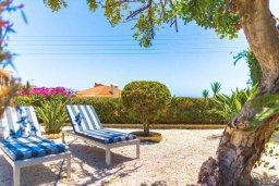 Зона отдыха у бассейна. Кипр, Пейя : Прекрасная вилла с бассейном и джакузи, 4 спальни, 3 ванные комнаты, барбекю, парковка, Wi-Fi
