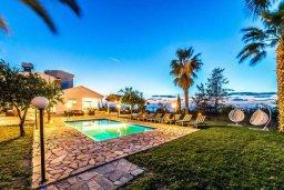 Территория. Кипр, Киссонерга : Прекрасная вилла с бассейном, джакузи и зеленым двориком с барбекю, 5 спален, 4 ванные комнаты, парковка, Wi-Fi