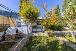 Территория. Кипр, Фиг Три Бэй Протарас : Прекрасная вилла с зеленым двориком, патио и барбекю, 5 спален, 2 ванные комнаты, парковка, Wi-Fi