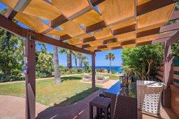 Территория. Кипр, Каппарис : Роскошная вилла в 100 метрах от пляжа с бассейном, джакузи и зеленой территорией, 5 спален, 4 ванные комнаты, барбекю, парковка, Wi-Fi