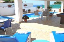 Зона отдыха у бассейна. Кипр, Помос : Прекрасная вилла в 50 метрах от пляжа, с бассейном и двориком с барбекю, 5 спален, 4 ванные комнаты, бильярд, парковка, Wi-Fi
