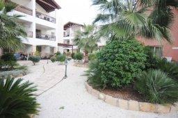Территория. Кипр, Пафос город : Апартамент в комплексе с бассейном, с гостиной, отдельной спальни и балконом
