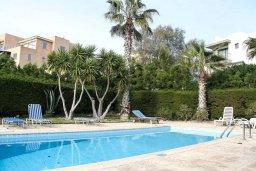 Бассейн. Кипр, Пафос город : Апартамент с гостиной, двумя спальнями и баклном