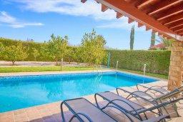 Бассейн. Кипр, Хлорака : Прекрасная вилла с бассейном и зеленым двориком с барбекю, 3 спальни, 3 ванные комнаты, парковка, Wi-Fi