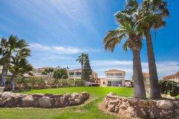 Территория. Кипр, Каппарис : Роскошная вилла в 50 метрах от пляжа с бассейном и зеленой территорией, 5 спален, 5 ванных комнат, барбекю, парковка, Wi-Fi