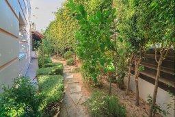 Территория. Кипр, Мутаяка Лимассол : Роскошная вилла с бассейном и зеленым двориком с барбекю, 5 спален, 2 ванные комнаты, настольный теннис, парковка, Wi-Fi
