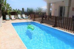 Бассейн. Кипр, Каппарис : Уютная вилла с бассейном и двориком с барбекю, 3 спальни, 2 ванные комнаты, парковка, Wi-Fi