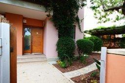 Территория. Кипр, Айос Тихонас Лимассол : Вилла с бассейном и зеленым двориком, с просторной гостиной, четырмя спальнями, двумя ванными комнатами