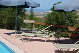Зона отдыха у бассейна. Кипр, Скулли : Уютная вилла с бассейном и зеленым двориком, 3 спальни, 3 ванные комнаты, парковка, Wi-Fi