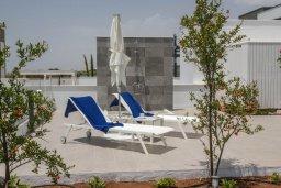 Территория. Кипр, Аммос - Лимнария Бич : Современная вилла в 70 метрах от пляжа, с большим бассейном, двориком с барбекю и джакузи, 5 спален, 4 ванине комнаты, парковка, Wi-Fi